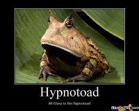 Heil der Hypnosekröte!